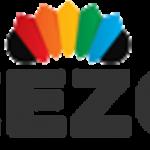 Wilt u Ceezoo een goede magento webshop laten bouwen?